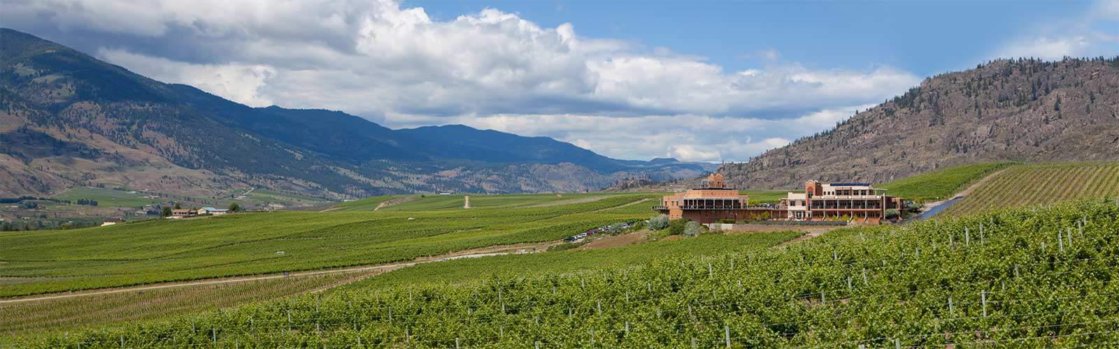 Oliver Wine Region Of British Columbia Wine Bc