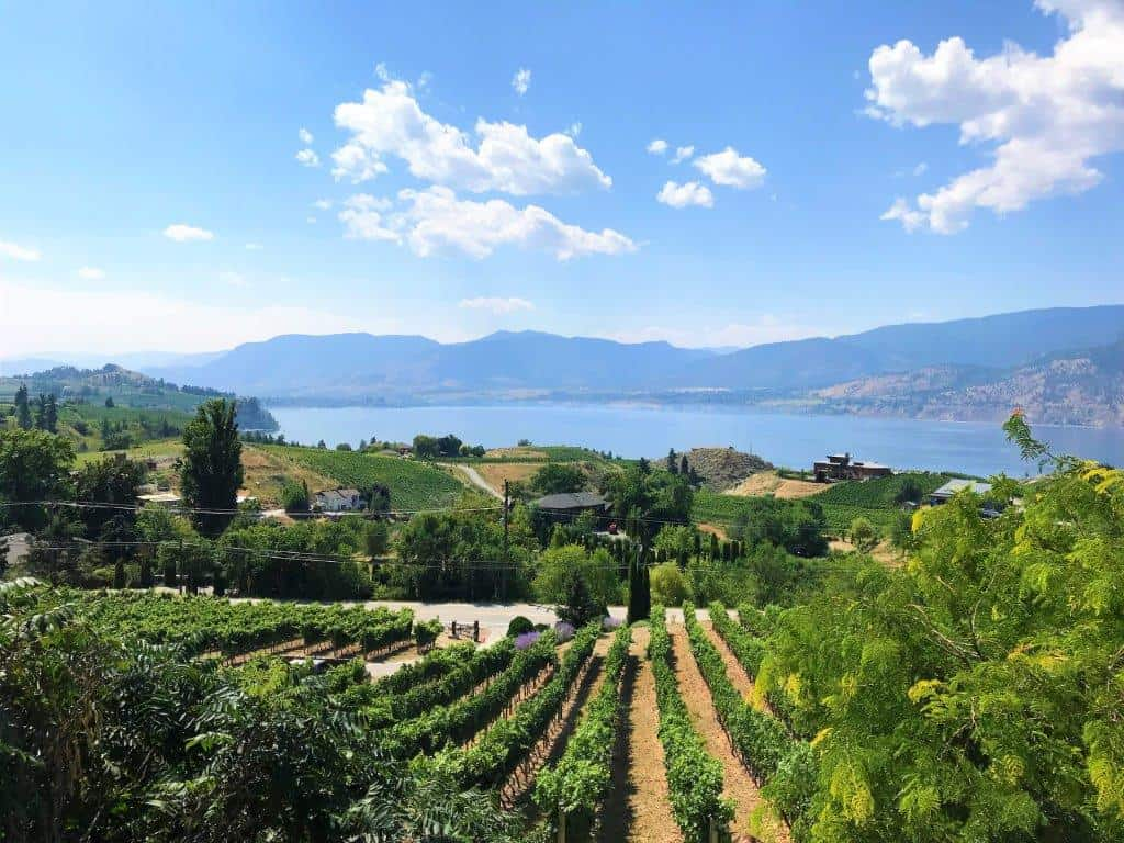 Best Of Bc Wine Country Tour With Fraiche Nutrition